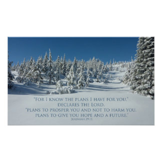 Jeremiah 29:11 I know the plans I have for you Poster