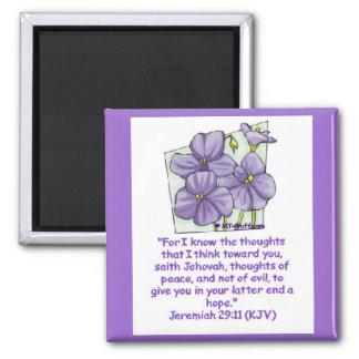Jeremiah 29:11 magnets