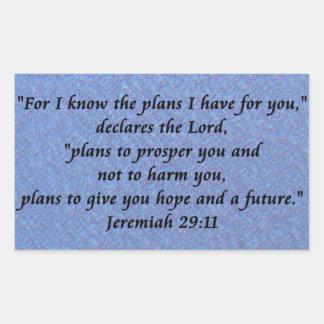 Jeremiah 29-11 pegatina rectangular