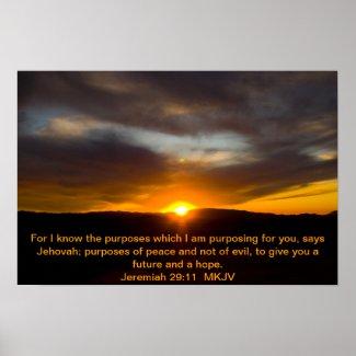 Jeremiah 29:11 Poster print