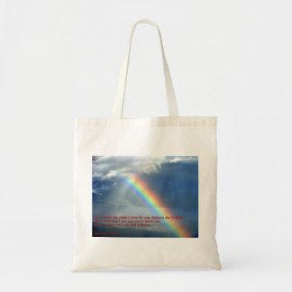 Jeremiah 29:11 Rainbow Bag