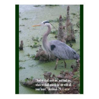 Jeremiah 29:13 Scripture Postcard