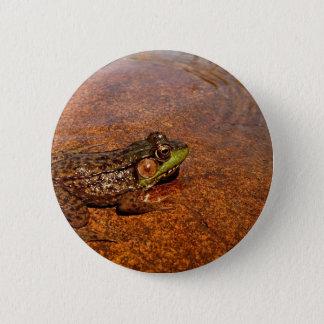 Jerimiah was a Bullfrog Pinback Button