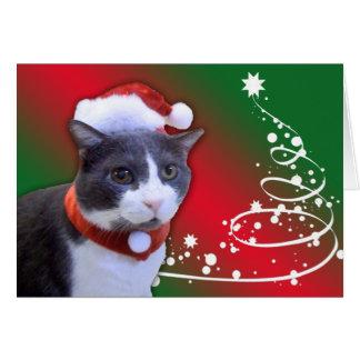 Jerry's Happy Holidays card