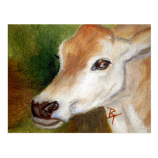 Jersey Cow aceo Postcard