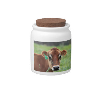 Jersey Cow Candy Jar