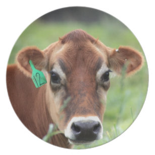 Jersey Cow Dinner Plate  sc 1 st  Zazzle & Jersey Cow Plates | Zazzle
