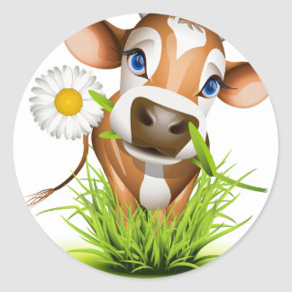 Jersey cow in grass classic round sticker