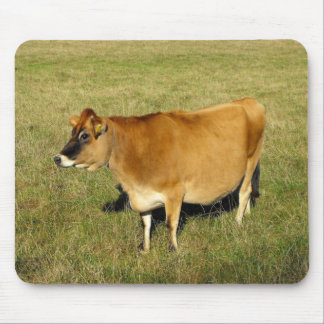 Jersey cow in St John Mouse Pad