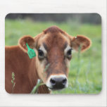 Jersey Cow Mouse Pad