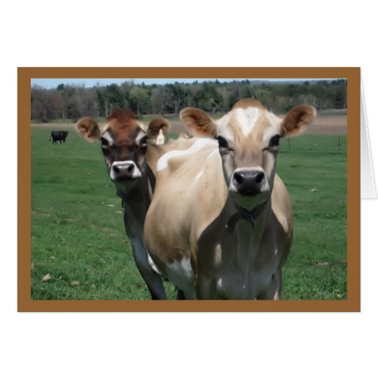 Jersey Cows Card