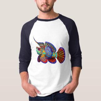 Jersey de los pescados de Dragonet del gobio del