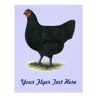 Jersey Giant Black Hen Custom Flyer