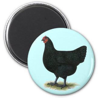 Jersey Giant:  Black Hen Fridge Magnet