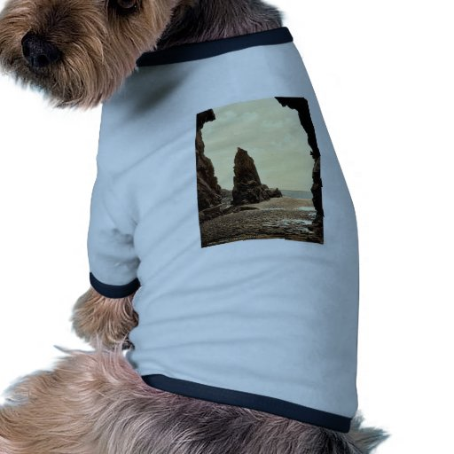 Jersey, Plemont Caves and Needle Rock, Channel Isl Pet Tshirt