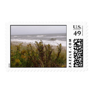 Jersey Shore Postage