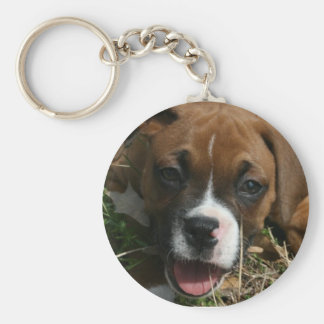 Jersey the Boxer keychain