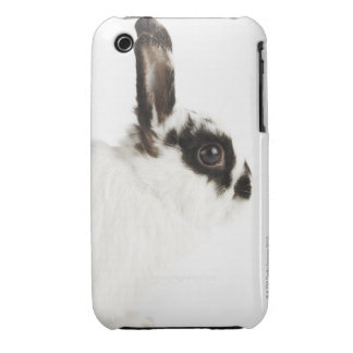 Jersey Wooly Rabbit iPhone 3 Case
