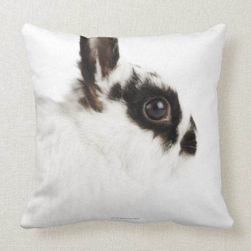 Jersey Wooly Rabbit Throw Pillow