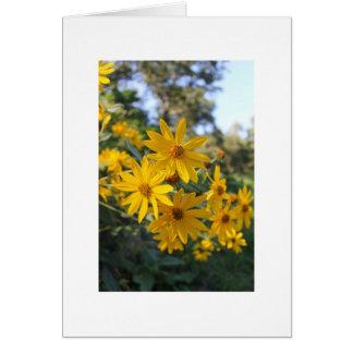 Jerusalem Artichoke Flowers Card