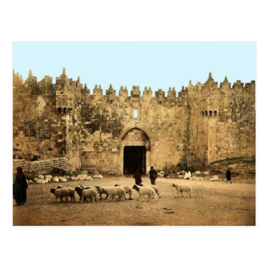 Jerusalem - Damascus Gate Postcard