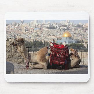 Jerusalem, world of colos, a camel mouse pad