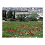 Jerusalén del oro y de las flores rojas tarjeta postal