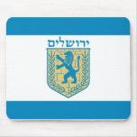 Jerusalén, Israel Tapetes De Ratones