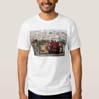 Jerusalén, mundo de colos, ciudad santa remeras