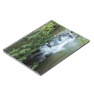 Jesmond Dene Notebook