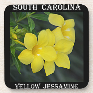 Jessamine amarillo Carolina del Sur Posavaso