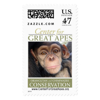 Jessie's Baby Postage Stamp