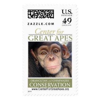 Jessie's Baby Stamp