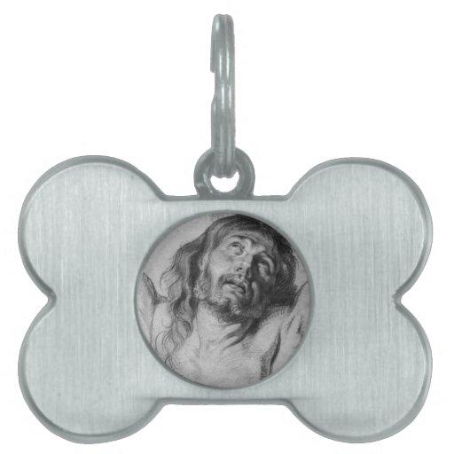 Jesucristo Placa De Mascota