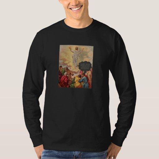 Jesus Ascends T Shirt