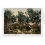 Jesús caminó aquí: Jardín de Gethsemane Felicitación