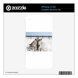 JESUS CHRIST SKINS FOR iPhone 4S
