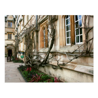 Jesus College in Oxford, England Postcard