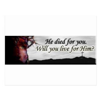 Jesus died for you, will you live for Him? Postcard