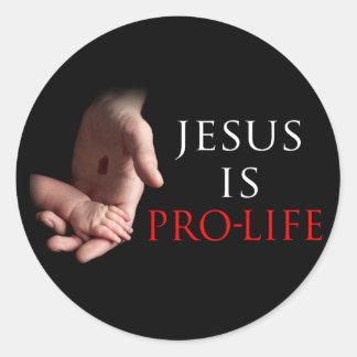 Jesus Is Pro-Life Stickers