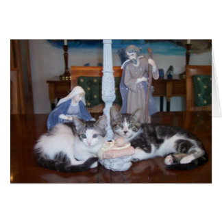 Jesus kittens greeting cards
