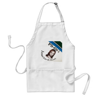 Jesus Light of the World Adult Apron