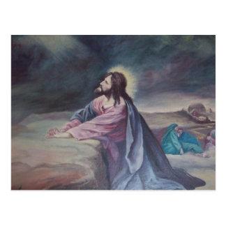Jesús que ruega en Gethsemane Tarjetas Postales