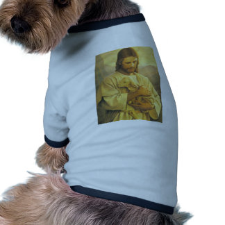 Jesús Camisetas De Mascota