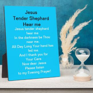 Jesus Tender Shephard Hear Me Plaque