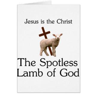 Jesus the Christ, spotless lamb of God Card