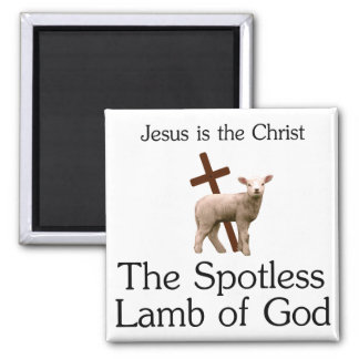 Jesus the Christ, spotless lamb of God Magnet