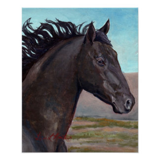 Jet : Band Stallion Of Sand Wash Basin Poster