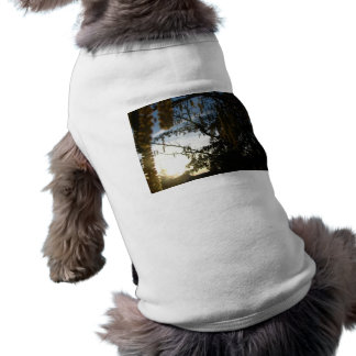 Jet Clouds Dog Clothing