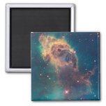 Jet in Carina Nebula Fridge Magnet